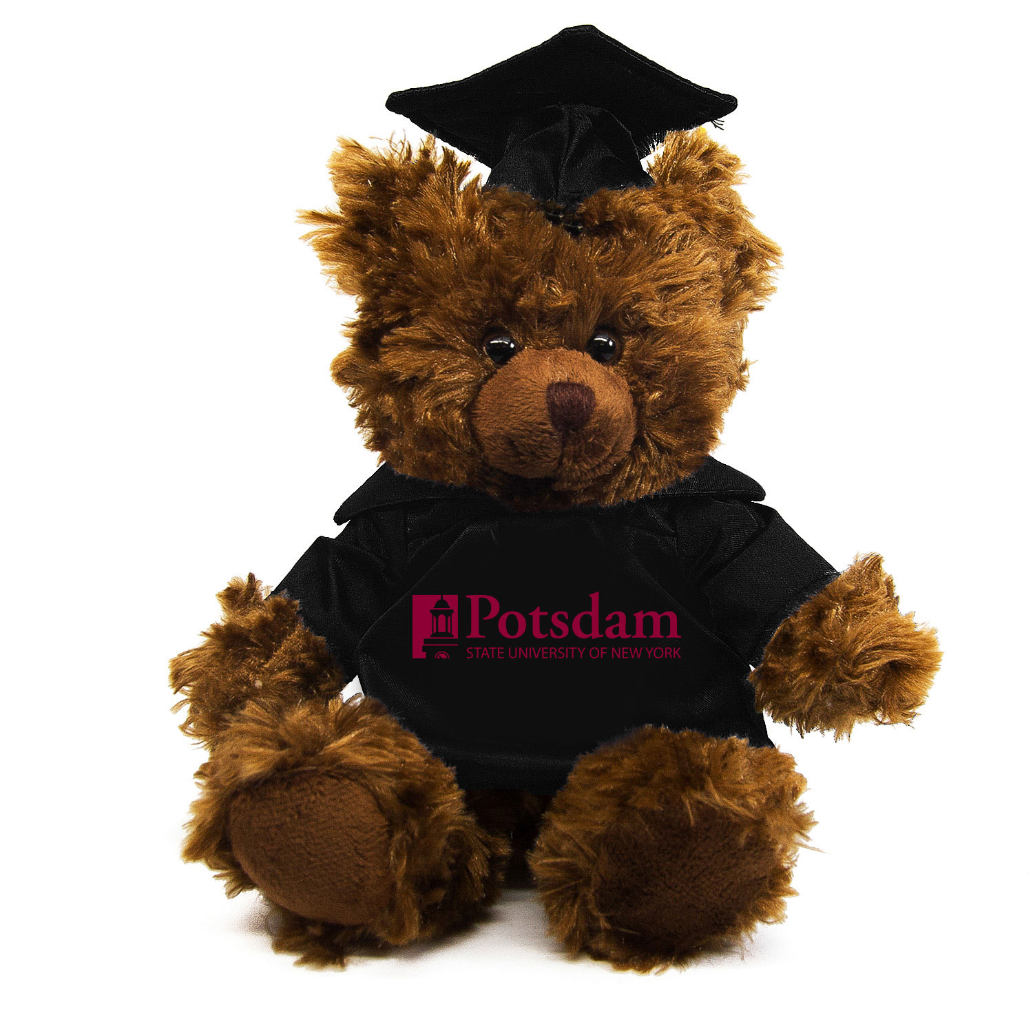 Image For POTSDAM GRADUATION BEAR